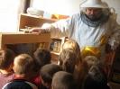 Prezentacije u dječijim vrtićima na temu Pčelica i med_24