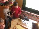 Prezentacije u dječijim vrtićima na temu Pčelica i med_23