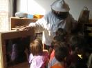Prezentacije u dječijim vrtićima na temu Pčelica i med_25