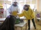 Prezentacije u dječijim vrtićima na temu Pčelica i med_32